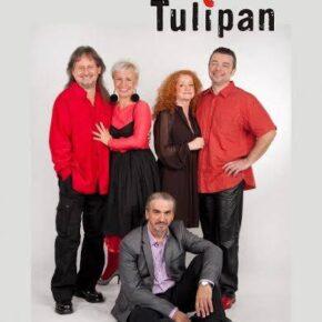 Czerwony Tulipan w Tawernie Keja. Koncert online